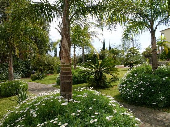 Quinta Jardins do Lago : Our Gardens