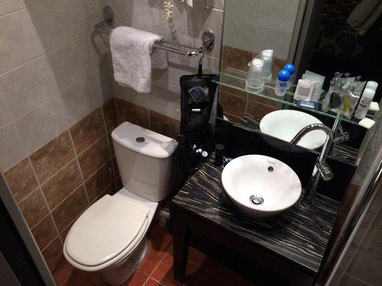 Hotel Andrea: Bagno piuttosto piccolo