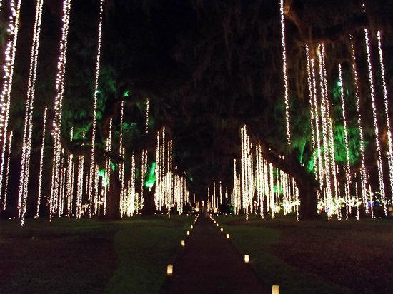Brookgreen Gardens: Oak Allee Nights of a Thousand Candles