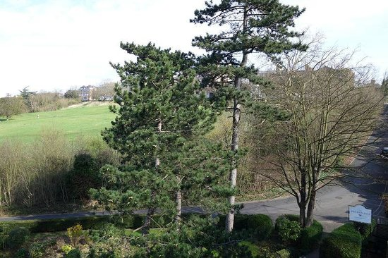 The Petersham Hotel: View from balcony looking at richmond hill