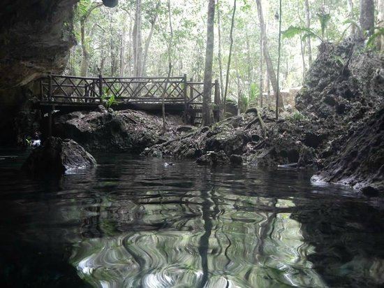 Selva Maya Eco Adventure: The first cenote