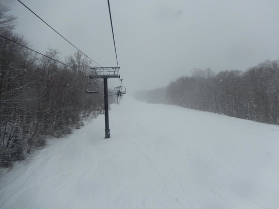 Bretton Woods: Looking up a trail and lift line