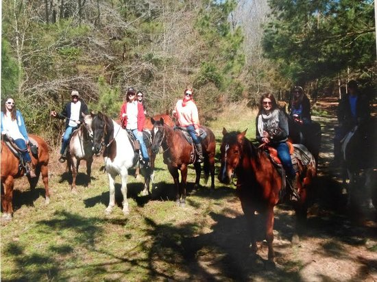 Horseback Riding Of Myrtle Beach Reviews