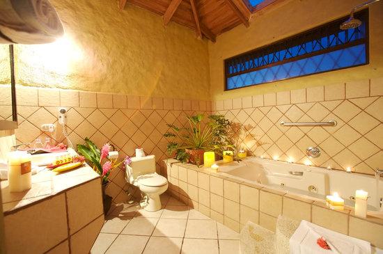 Arenal Volcano Inn: Baño de Suite