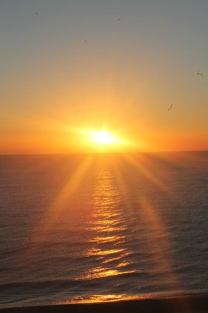 Fort Lauderdale Marriott Pompano Beach Resort & Spa : sun rising in the east