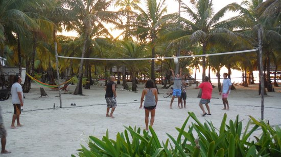 Long Caye Resort: Daily Volleyball