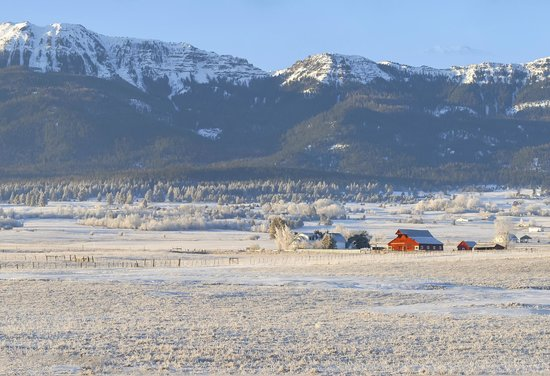 Barking Mad Farm & Country B&B: Barking Mad Farm and Wallowa Mountains in the Winter