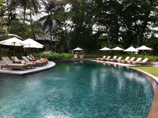 Constance Ephelia : pool