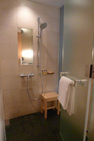Hyatt Regency Kyoto: shower