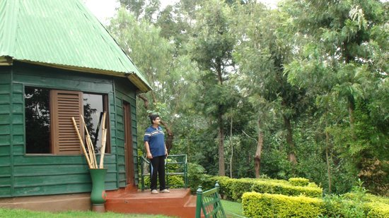 Songota Falls Lodge : cottage and surroundings