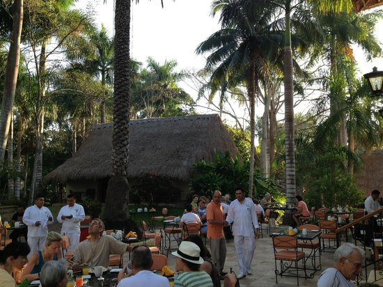 Hotel & Bungalows Mayaland: Breakfast on the patio and garden