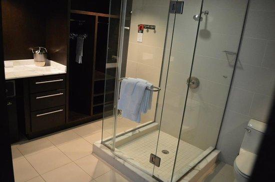 The Condado Plaza Hilton: Modern Bathroom