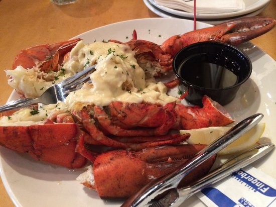 Chewy Lobster Picture Of Drago S Seafood Restaurant Metairie