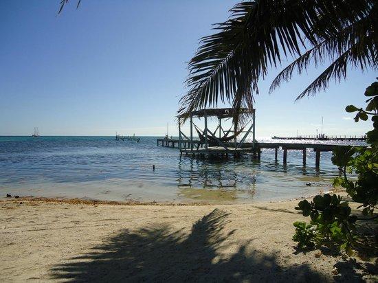 Yuma's House Belize : Vista do Hostel