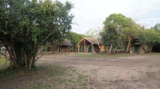 Queen Elizabeth Bush Lodge : Tents
