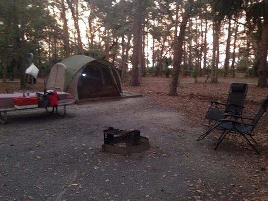 Fort McAllister State Historic Park Campground: good pic of the fire ring/grill