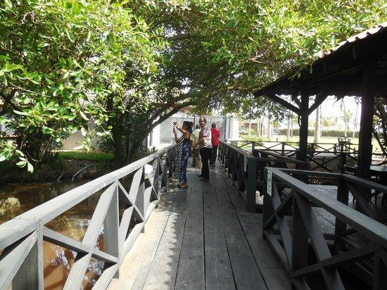 Labadi Beach Hotel : Bridge going to beach from hotel