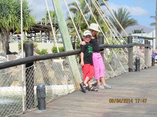 HL Paradise Island : het bruggetje