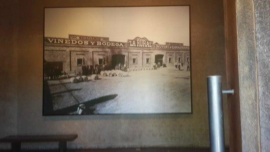 Museo del vino: Principio de la visita
