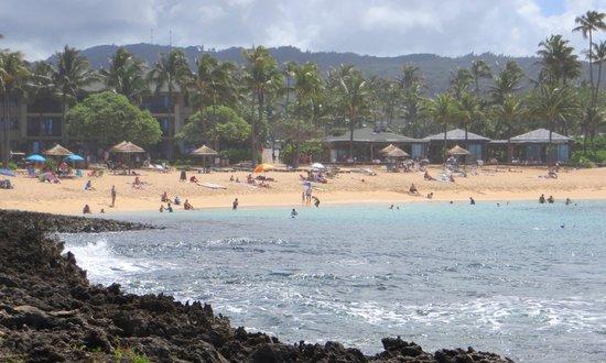 Turtle Bay Resort: Swimming lagoon; Ola location