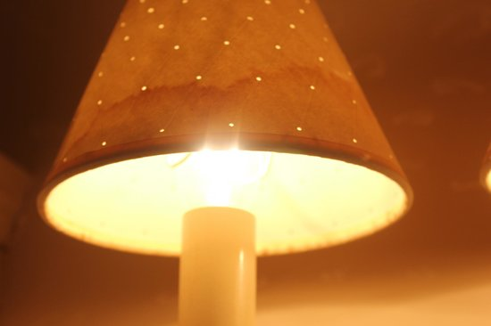 The Mill House Inn: Lampshade