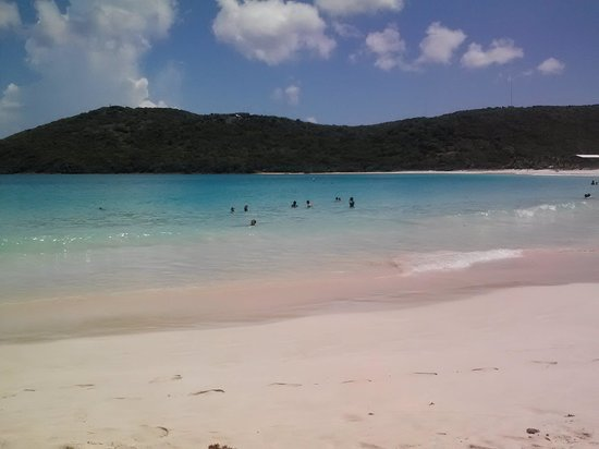 Playa Flamenco: flamenco beach