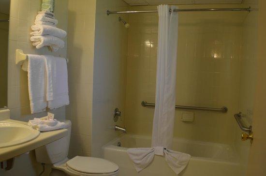 آمبرز هايدواي: Handicap Bathroom