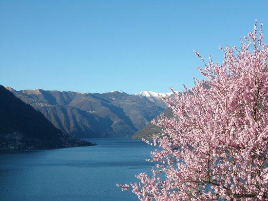 Lombardy, Italy: primavera sul lago