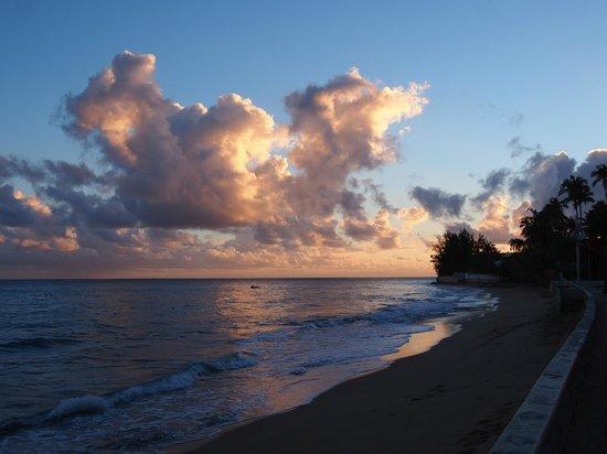 Tres Palmas Inn: Ocean view from front of Inn