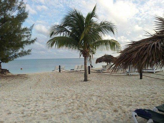 Viva Wyndham Fortuna Beach : Beach