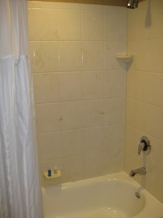 Radisson Hotel Bloomington by Mall of America: Shower