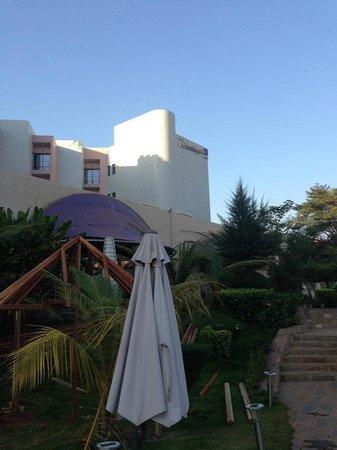 Radisson Blu Hotel, Bamako: Autour de la piscine