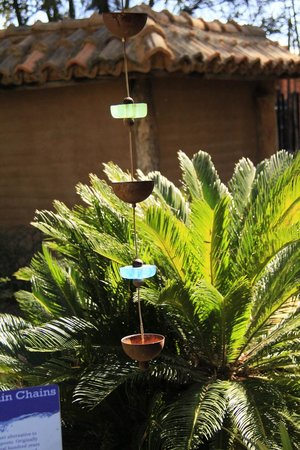 Tucson Botanical Gardens : A rain chain close to the Zen Garden