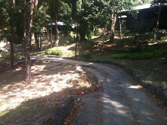 Century Langkawi Beach Resort: naturkatastrof på hotellområdet?