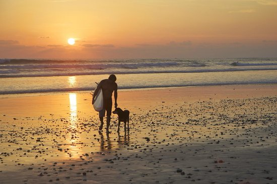 Tango Mar Beachfront Boutique Hotel & Villas: Playa Carmen sunset