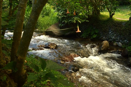 Valle Escondido Resort Golf & Spa: vista de la quebrada