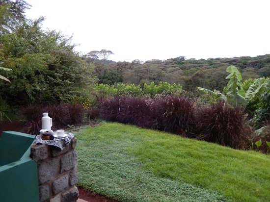 Endoro Lodge : Coffee brought in the morning by staff and great view
