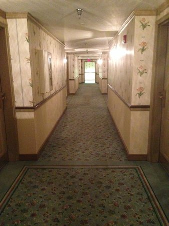 The Desmond Hotel Albany: Hallway