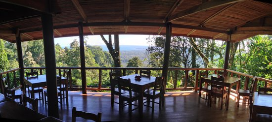 Samasati Retreat & Rainforest Sanctuary: view from restaurant, photo by Henry Rowland
