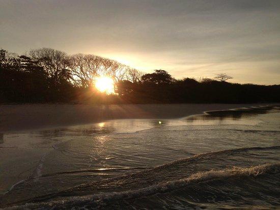 Safari Surf School: Sunrise