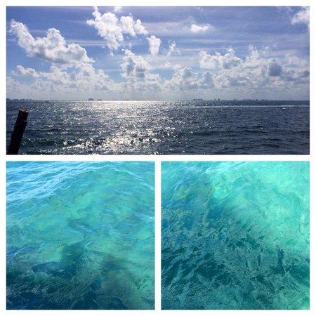 Playa Norte: Water colors at isla mujeres