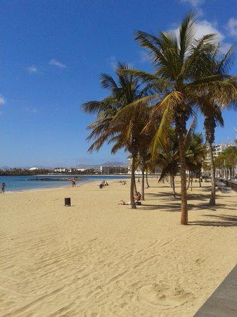 Sol Lanzarote All Inclusive : beach in Arrecife