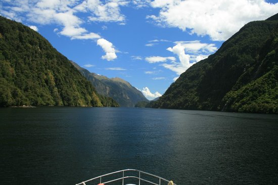 Doubtful Sound: WHAT Scenery!!!!