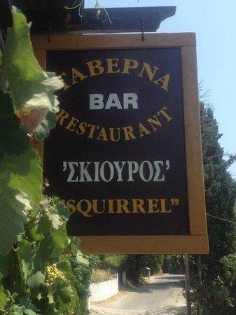 Squirrel Restaurant: Squirrel