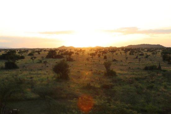 Robanda Safari Camp: chambre au milieu de la savane