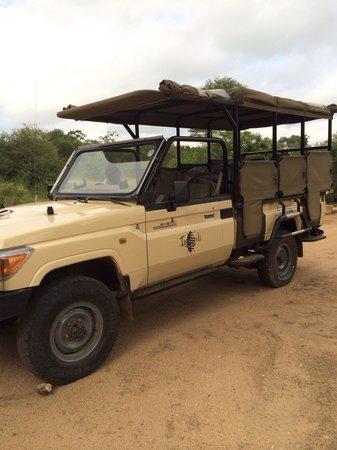 Hoyo-Hoyo Safari Lodge: Game drive