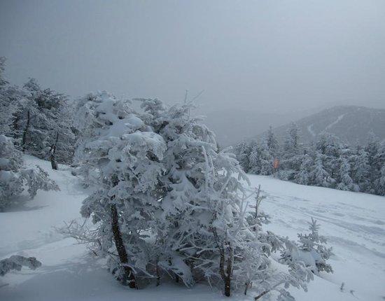 Jay Peak Resort : Top of Bonaventure Chair Lift