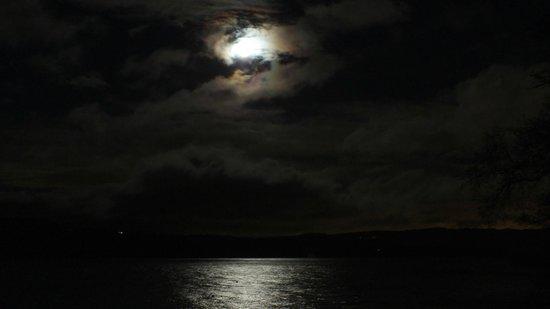 Auchenheglish Lodges : moonlit loch