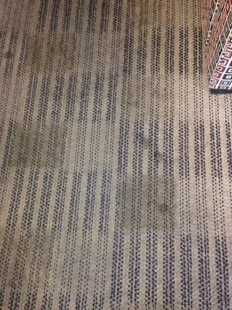 Extended Stay America - Phoenix - Airport - E. Oak St.: filthy carpet