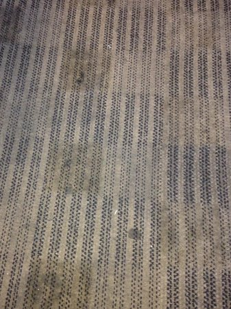 Extended Stay America - Phoenix - Airport - E. Oak St. : words and even pictures cannot describe this carpet